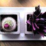 Design tafels in alle soorten, maten en kleuren