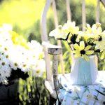 Tips voor het kopen van een tuinset