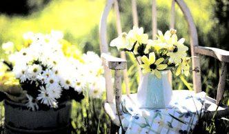 tuinset kopen informatie tips